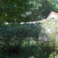 Landhaus23