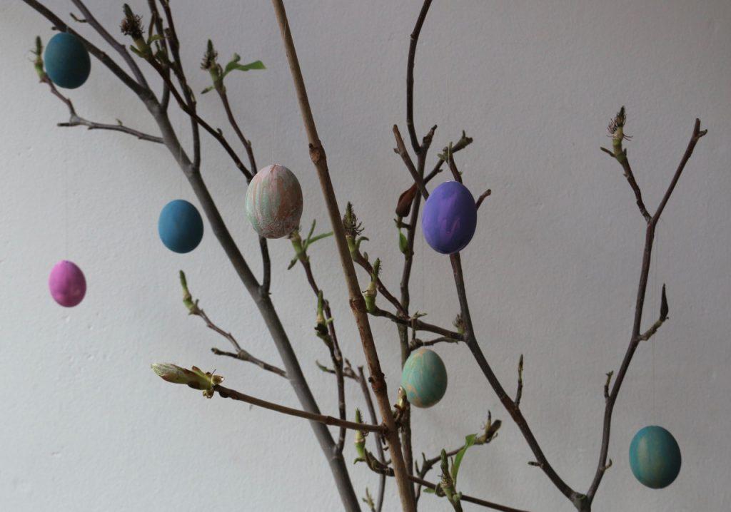 Bunte Eier an Magnolienzweigen innen