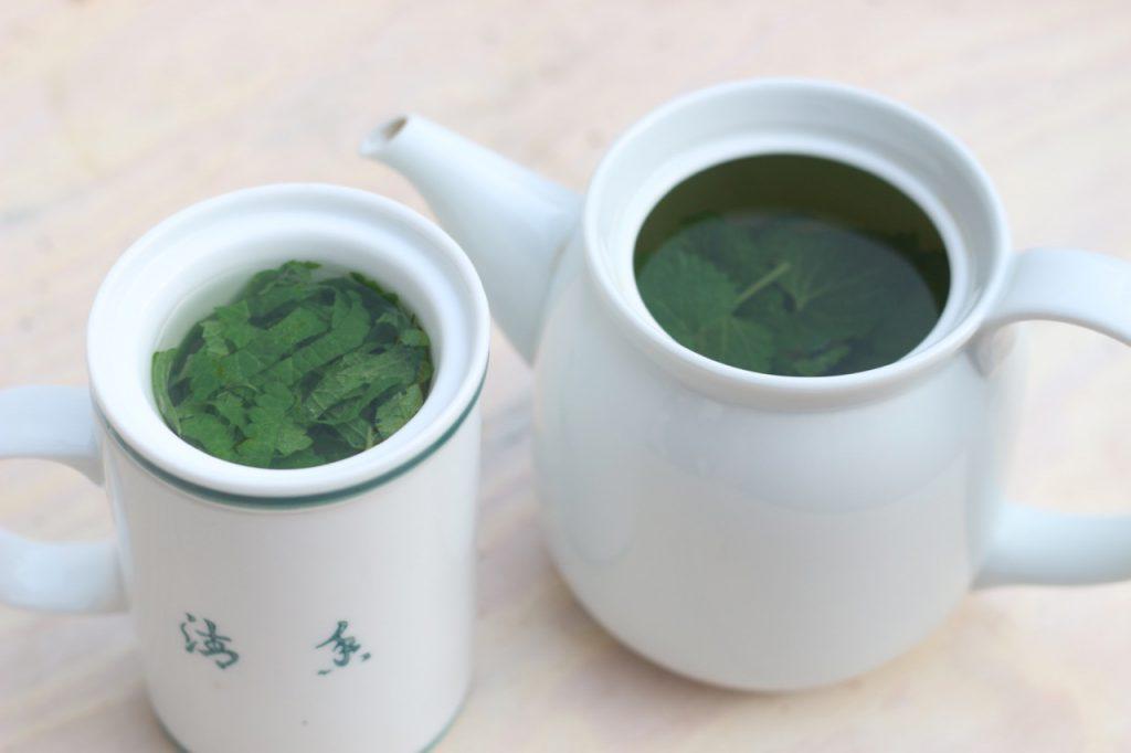 Melissentee aus frischen Blättern, Tasse und Kanne