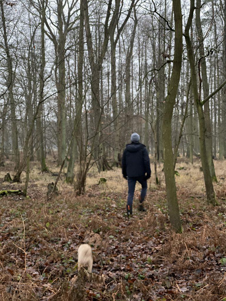 Mann und Hund gehen in den winterlichen Wald