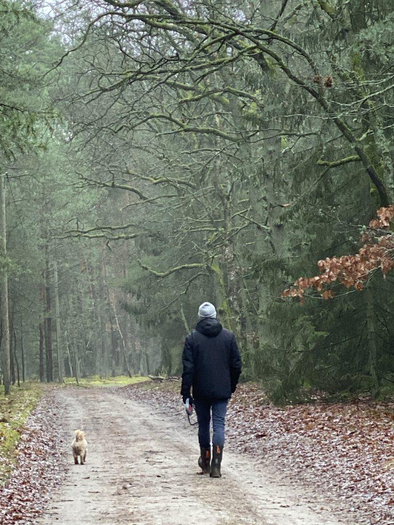 Mann und Bolonka-Zwergpudel bei Spaziergang im Wald