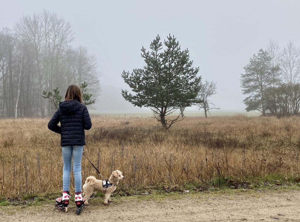 Mädchen mit Hund vor nebligem Feld