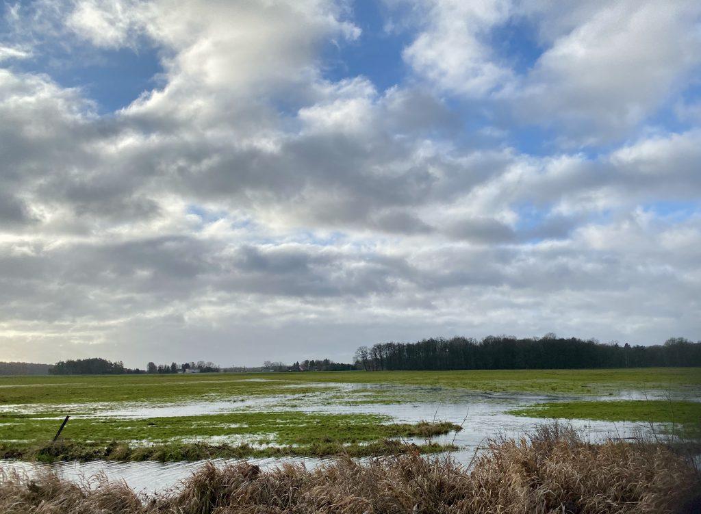 Wasserpfützen auf Wiese Auf flacher Landschaft in Nordistdeutschland, blauer Himmel mit weißen Wolken