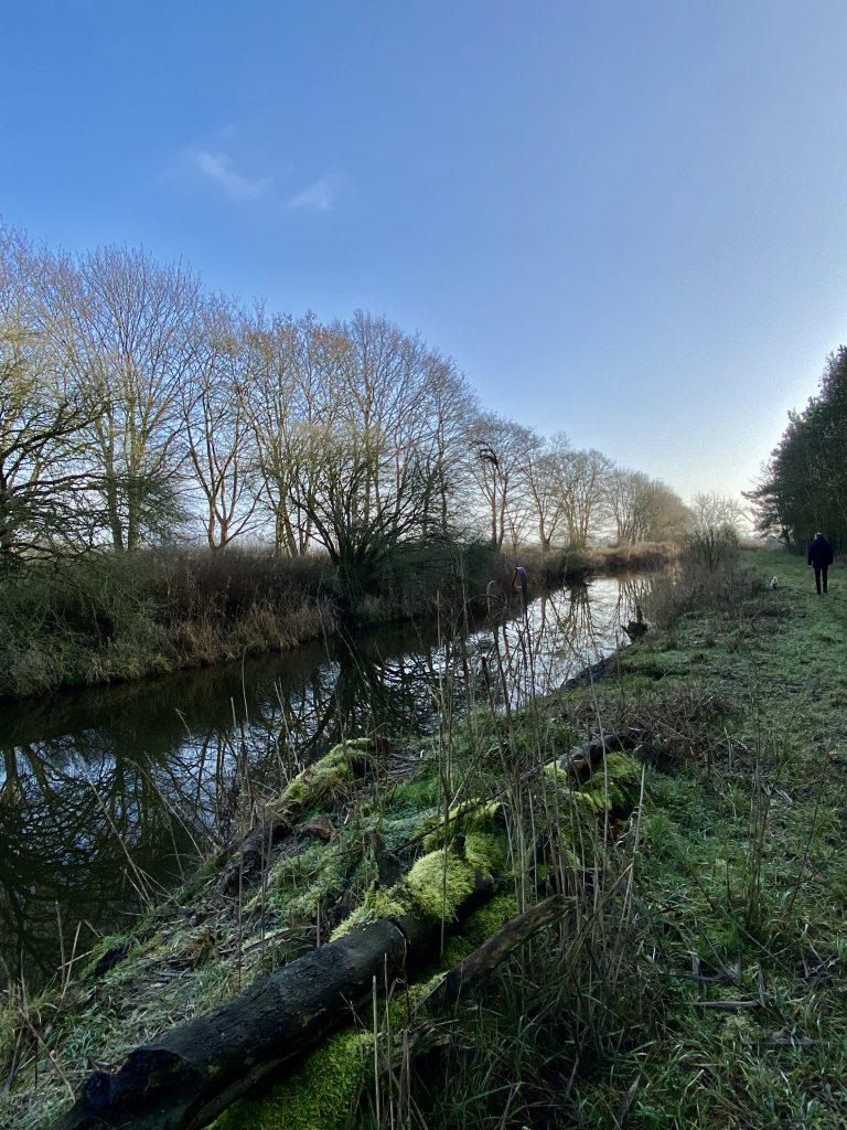 Fluss im Winter, bemooste Baumstämme am Ufer im Vordergrund