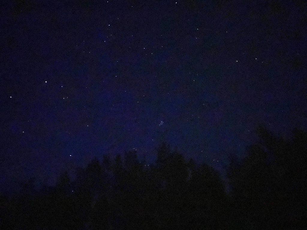 Sternenhimmel über Waldsaum