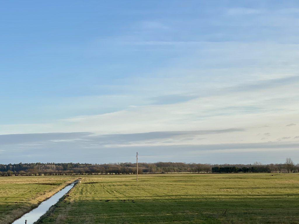 Feld mit Wassergraben in flacher Landschaft in der Morgensonne