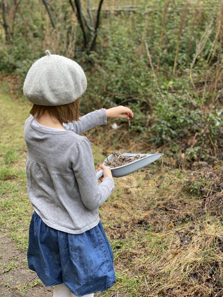 Kind streut Samen von einer Kehrschaufel auf eine Wiese