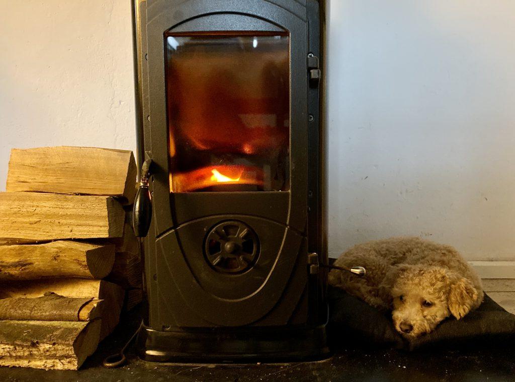 Holzofen (schwarz) mit Feuer drin, links davon Holzstapel, rechts davon kleiner Bolonka-Pudel-Mischling, der auf einem Kissen liegt