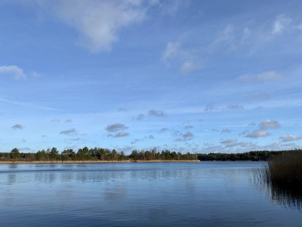 Blauer See mit Bäumen am Ufer vor blauem Himmel