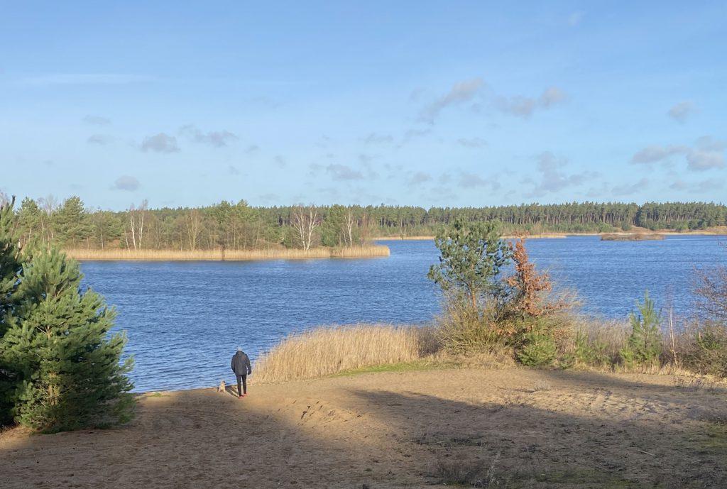 Blauer See in Winterstimmung mit Kiefern, Mann und Hund am Sand-Ufer