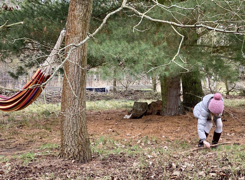 Kind sammelt Zweige in Naturgarten