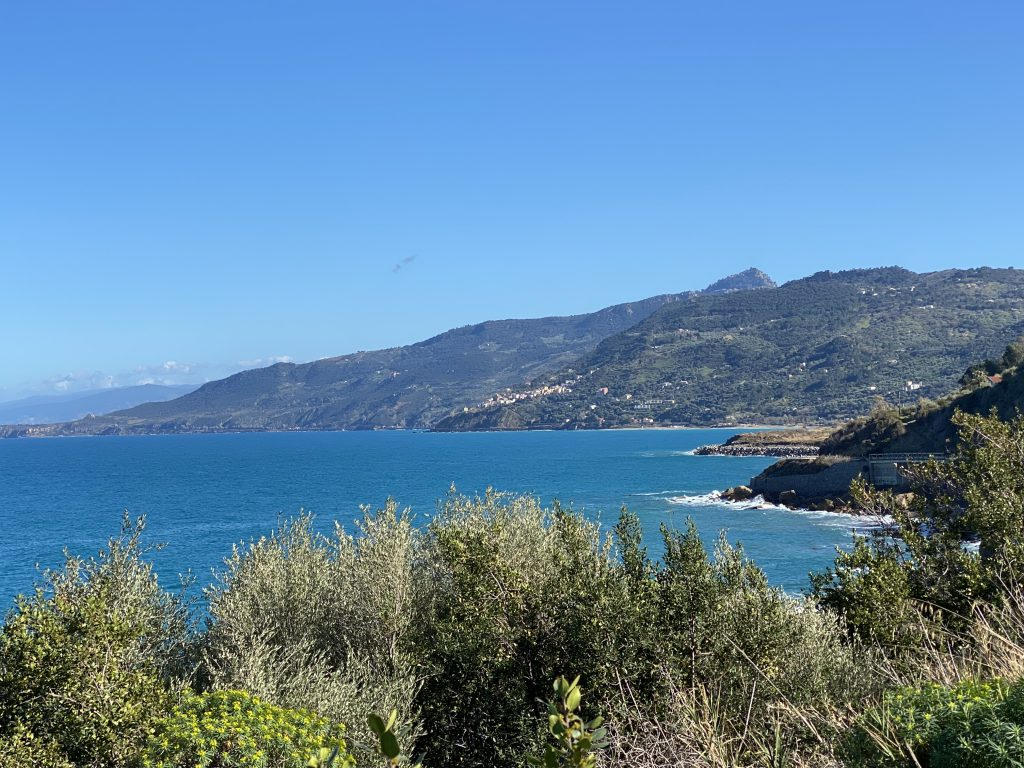 Küste mit Hügeln und mediterranen Pflanzen im Vordergrund