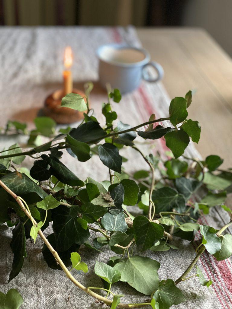 Efeu kann man verwenden, um Peeling selber zu machen. Auf dem Bild: Efeuranken auf Holztisch.