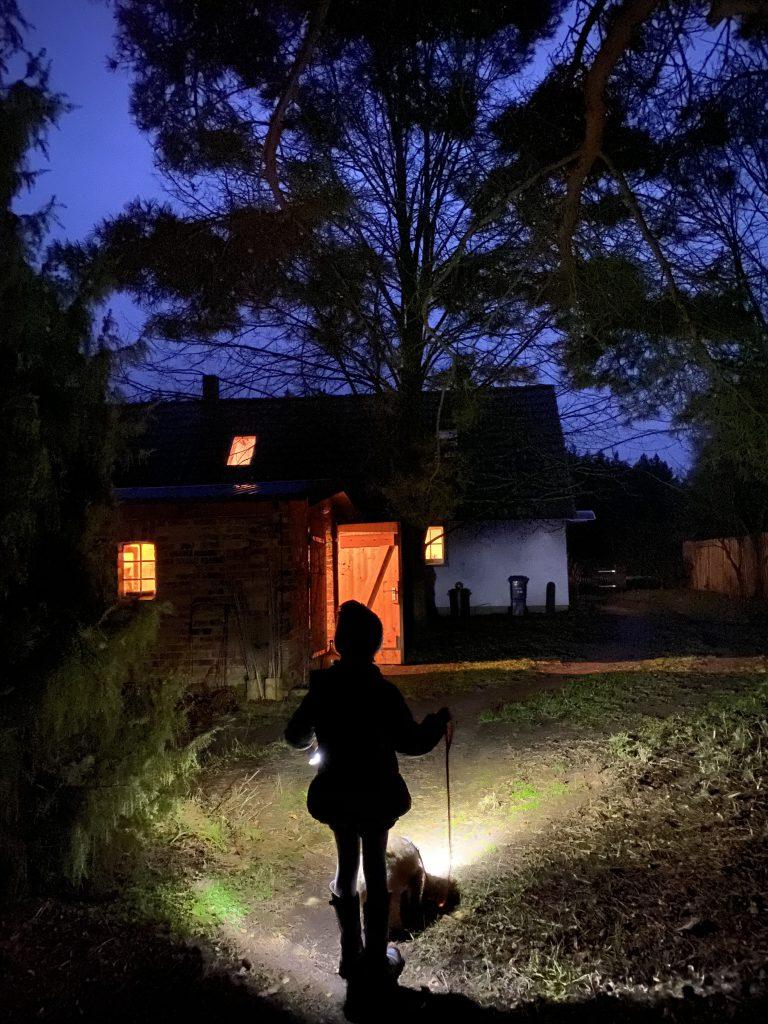 Kind mit Hund von hinten geht in Dämmerung auf erleuchtetes Haus zu
