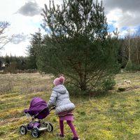 Kind mit Puppenwagen in Heidelandschaft