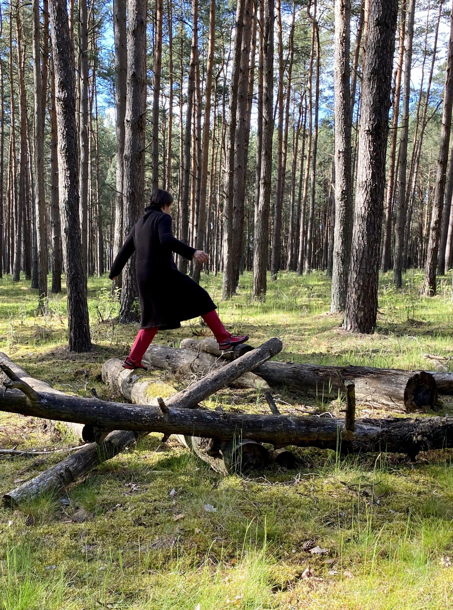 Glücksmoment 3: Im Wald von Baumstamm zu Baumstamm springen, vor Kiefernstämmen
