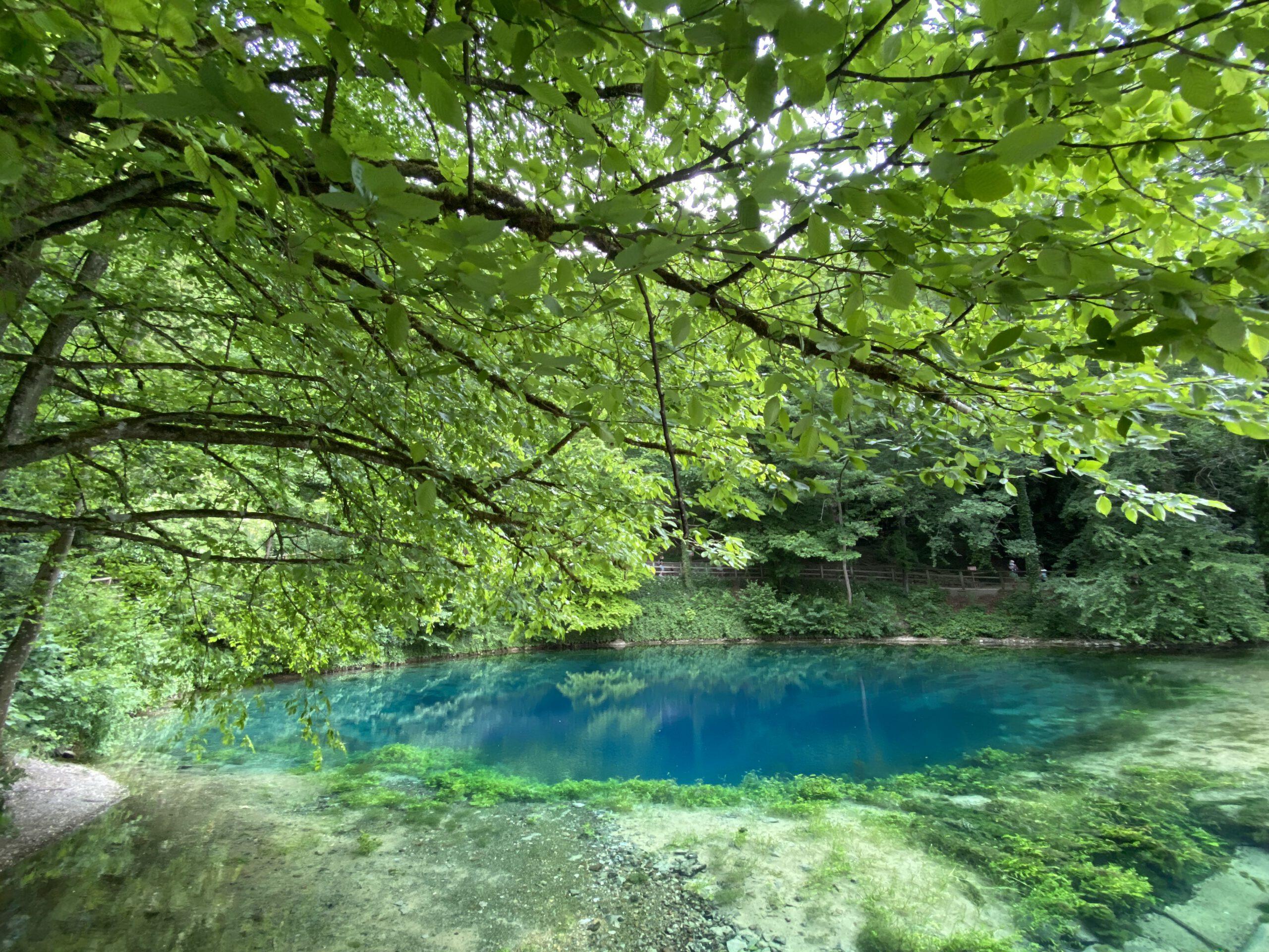 Der Blautopf bei Blaubeuren am 3. Juni 2020, unter grünen Blättern
