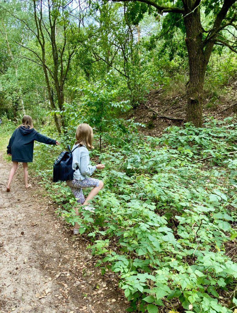 Meine beiden Töchter pflücken Himbeeren im Wald - der 5. meiner Glücksmomente im Juli