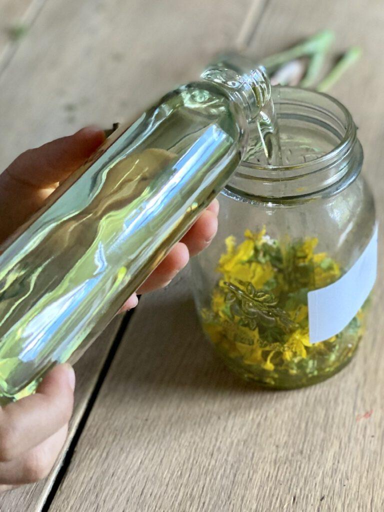 Johanniskrautöl selbst herstellen: Die Blüten mit Öl aufgießen