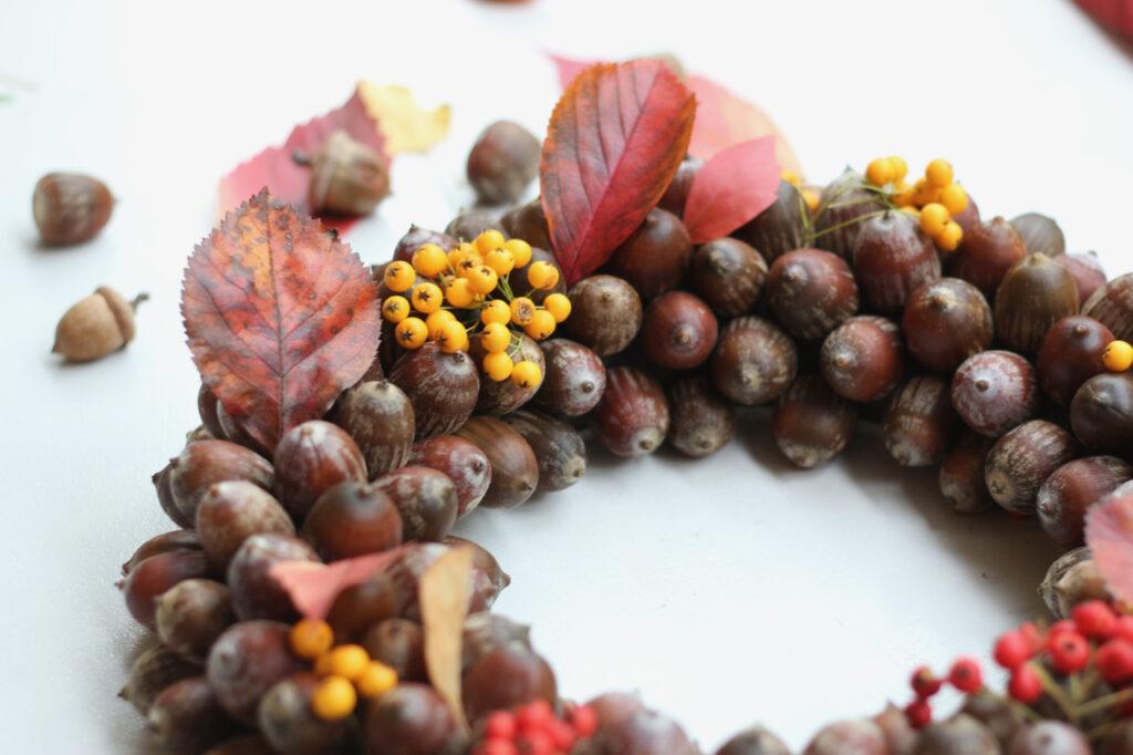 Kranz aus Eicheln mit Blättern und Beeren