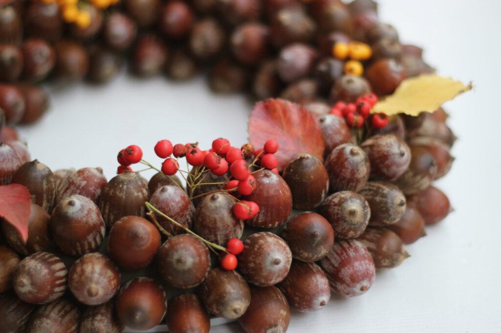 Eichelkranz Ausschnitt mit Blättern und Beeren hineingesteckt