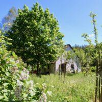 Haus auf dem Land / feinslieb zwischen Maibäumen und Wiese davor