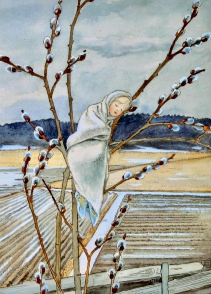 Bild von Elsa Beskow: Weidenkätzchen-Kind in einem Weidenbaum, zwischen Zweigen mit Weidenkätzchen
