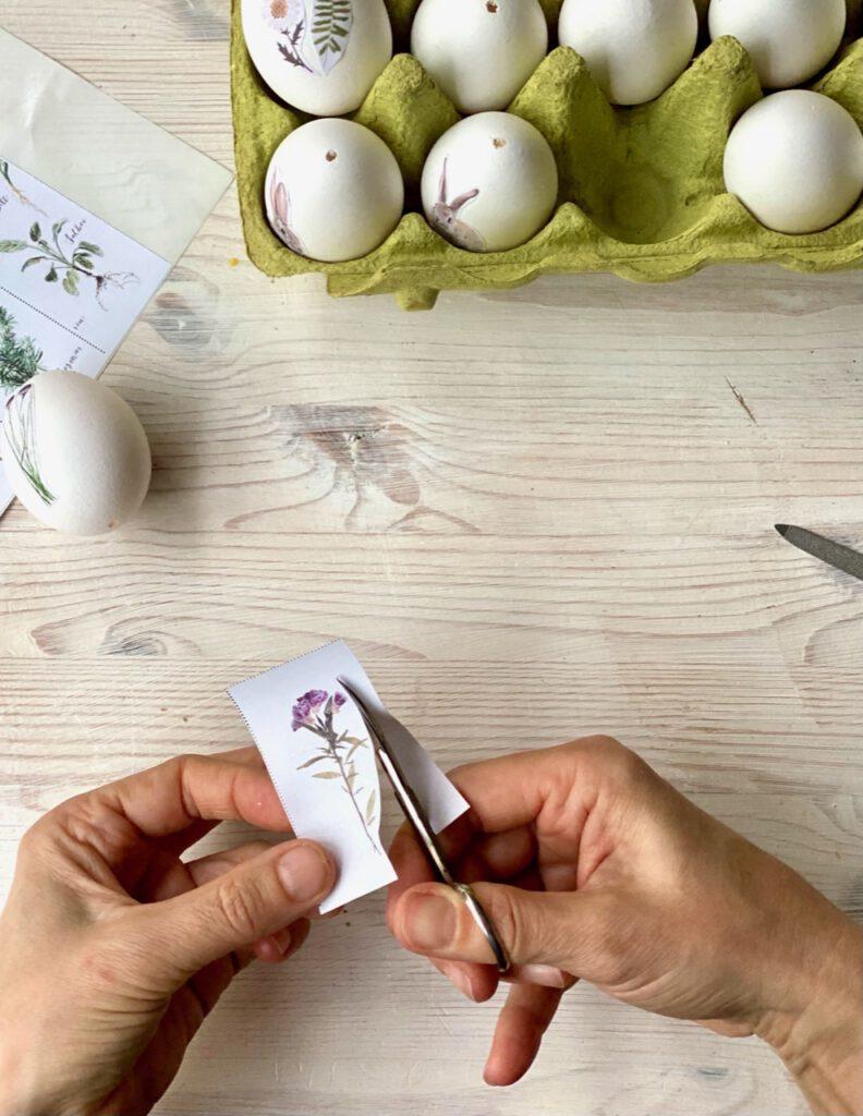 Ostereier mit Blumen verzieren: Hand schneidet Motiv aus