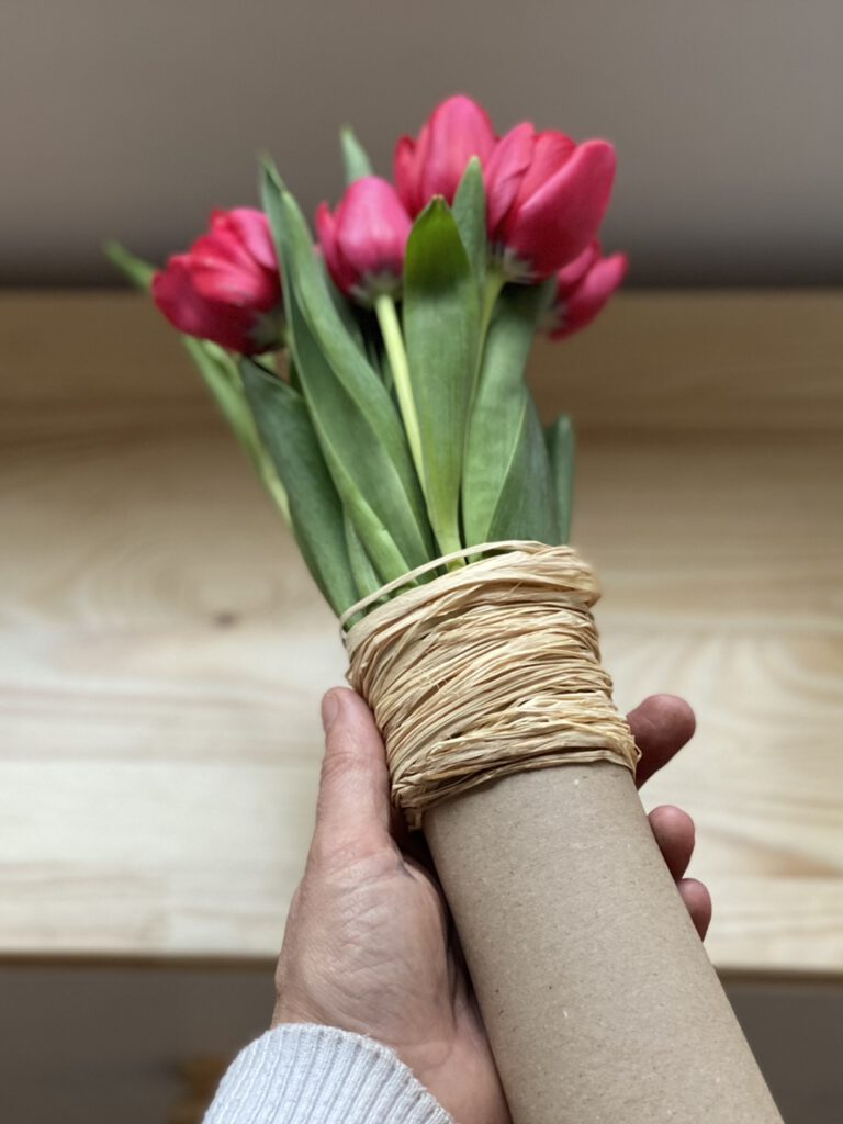 Pinke Tulpen in Papprolle in Hand gehalten