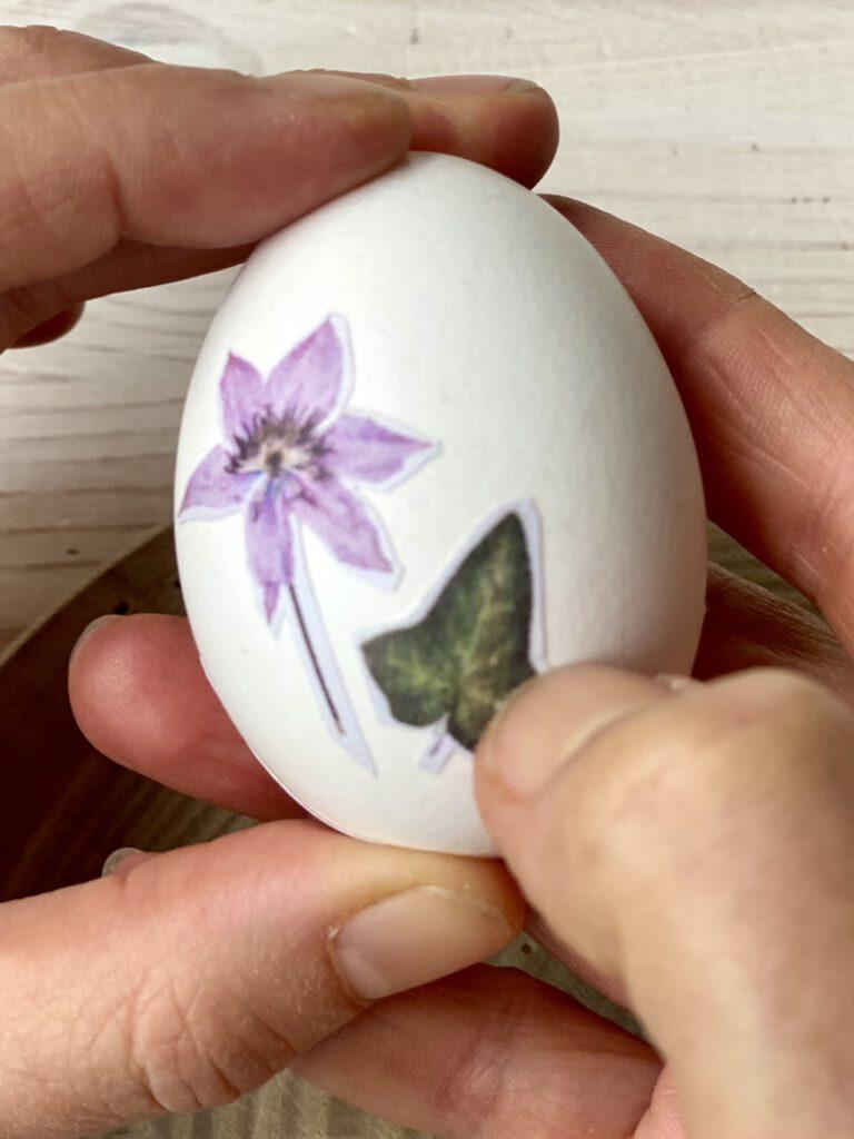 Ostereier mit Blumen verzieren wird dann besonders schön, wenn man mit dem Daumennagel die Falten in den Motiven glättet