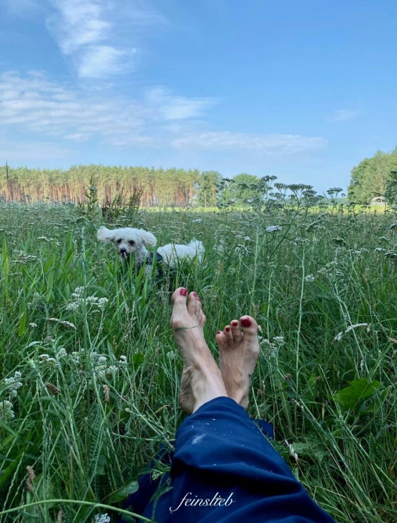 perfekter Tag im Juli 2021: Ausgestreckte Füße auf einer grünen Wiese mit Schafgarbe. Weiter hinten und er Wiese ein kleiner weißer Hund und darüber blauer Himmel