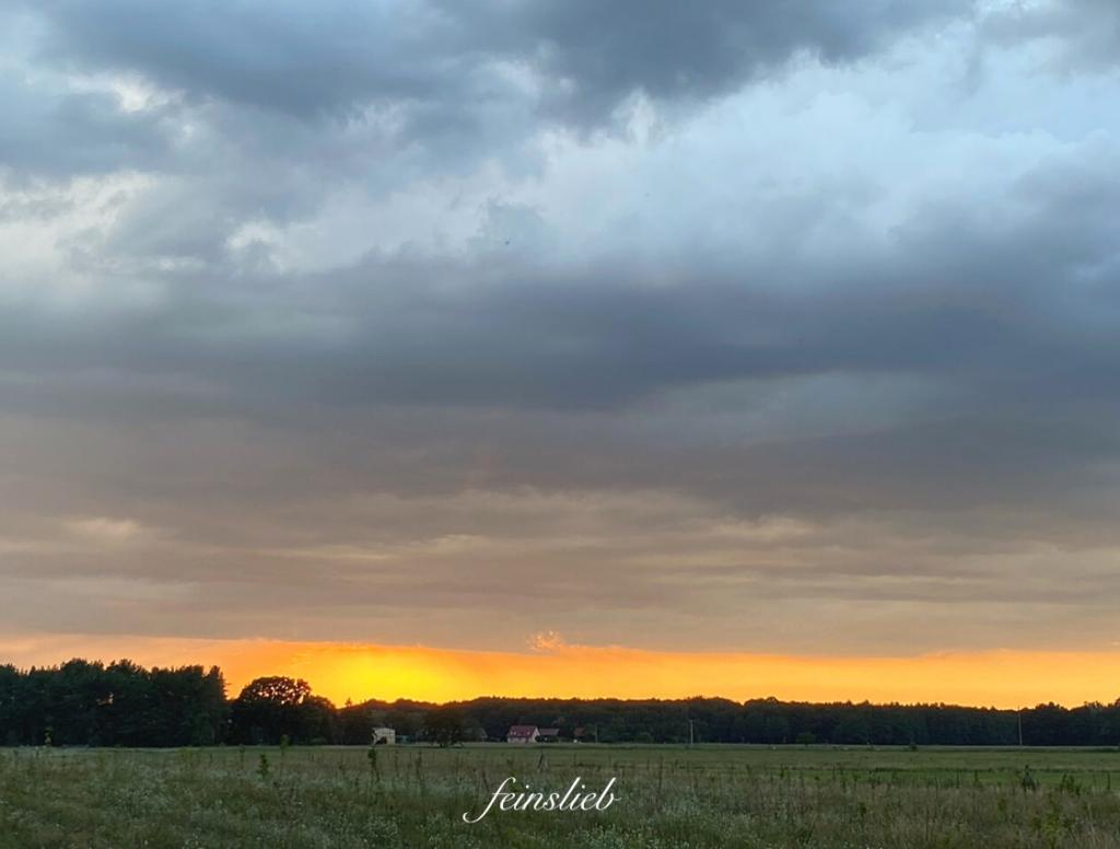 Sonnenuntergang mit orangenem Streifen unter graublauen Wolken