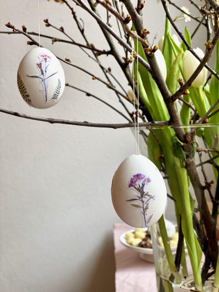 Zwei Eier mit Bildern von lila gepressten Blumen drauf